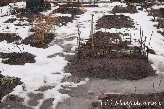 Puutarhapalstalla helmikuussa 2014
