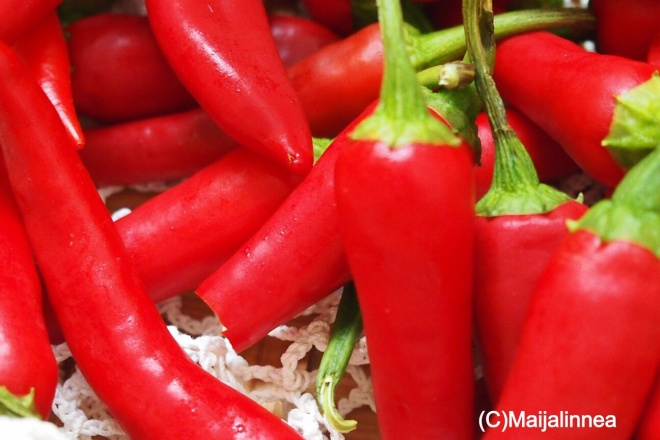 Chilipaprikasatoa