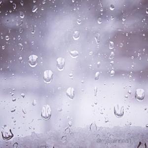Vesipisarat ikkunassa