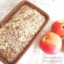 Omenaterriinin ohje blogissa